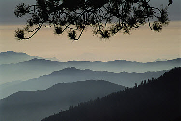 Ridge lines silhouetted in mist, Kings Canyon National Park, California  -  Jim Brandenburg