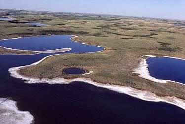 Aerial view of prairie pothole region, a unique area where shallow depressions created by the scouring action of glaciation creates wetland habitat, South Dakota  -  Jim Brandenburg