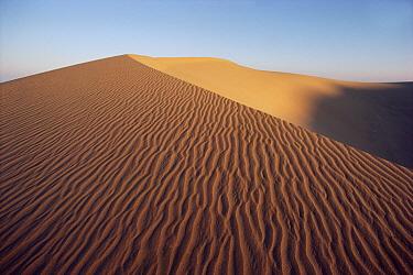 Wind ripples in sand dunes, Namib Desert, Namibia  -  Jim Brandenburg