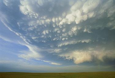 Prairie under threatening thunder clouds, South Dakota  -  Jim Brandenburg