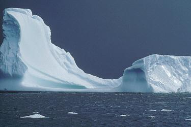 Iceberg near Palmer Peninsula, Antarctica  -  Flip Nicklin
