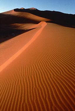 Landscape of rippling sand, Namib Desert, Namibia  -  Jim Brandenburg