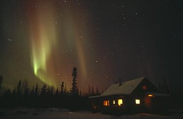 Aurora borealis over cabin, Alaska  -  Michio Hoshino