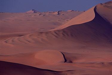 Sand dunes, Namib Desert, Namibia  -  Jim Brandenburg