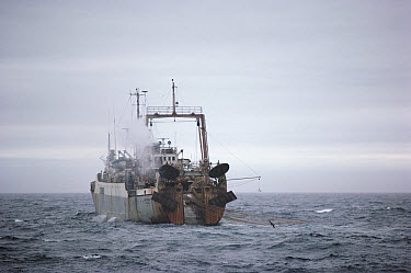 Antarctic Krill (Euphausia superba) trawler, Antarctica  -  Flip Nicklin