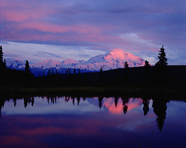 Mt Denali and Wonder Lake, Denali National Park and Preserve, Alaska  -  Michio Hoshino