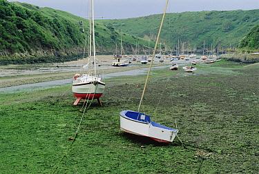 Boats stranded at low tide, Wales, United Kingdom  -  Jim Brandenburg