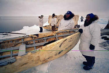 Bowhead Whale (Balaena mysticetus) hunters, Inuits in traditional clothes with sealskin boat waiting for whales, Brower fishing camp, Barrow, Alaska  -  Flip Nicklin