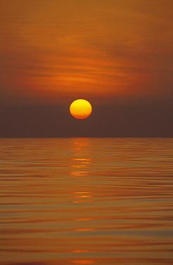 Sunset over calm ocean, Sri Lanka  -  Flip Nicklin