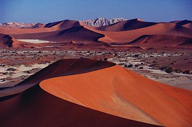 Landscape of sand dunes, Namib Desert, Namibia  -  Jim Brandenburg