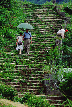 Tourists descending an old French staircase, Tam Dao National Park, Vietnam  -  Mark Moffett
