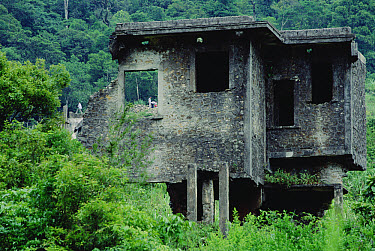 Ruins of villas built by French colonials that were bombed by Vietnamese partisans in the mid-1950's, Tam Dao National Park, Vietnam  -  Mark Moffett