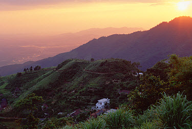 Sunset over the Tam Dao Mountains, Tam Dao National Park, Vietnam  -  Mark Moffett