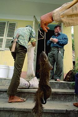 Russian herpetologist Nikolai Orlov purchasing a squirrel from villager, Tam Dao National Park, Vietnam  -  Mark Moffett