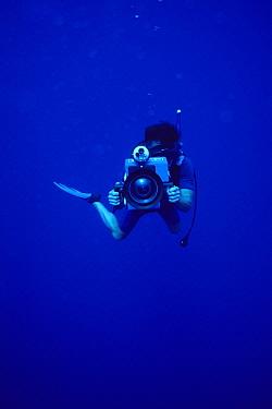 Rick Rosenthal, BBC filmmaker, filming underwater Maui, Hawaii  -  Flip  Nicklin