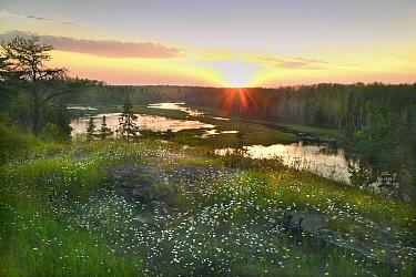 Rookie Lake, Northwoods, Minnesota  -  Jim Brandenburg