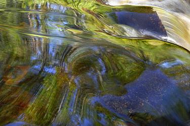 Judd Creek rapids, Northwoods, Minnesota  -  Jim Brandenburg