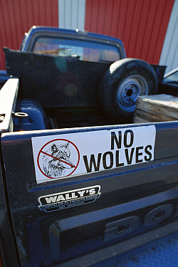 Truck with anti-wolf bumper sticker, Virginia  -  Jim Brandenburg
