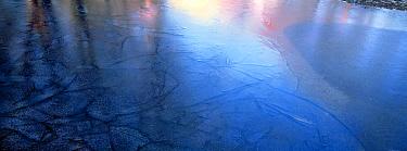 Fresh ice on Moose Lake, Boundary Waters Canoe Area Wilderness, Minnesota  -  Jim Brandenburg