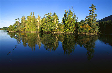 Clayoquot Sound, Vancouver Island, British Columbia, Canada  -  Flip  Nicklin