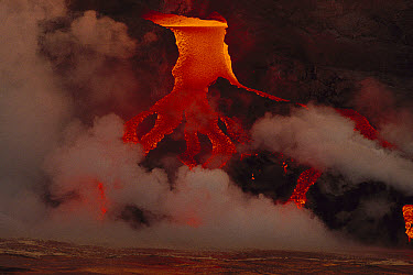 Hot lava entering the ocean with resulting steam plumes, Galapagos Islands, Ecuador  -  Mitsuaki Iwago