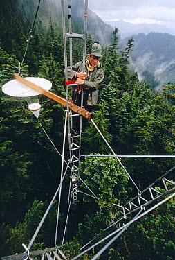 Researcher Tom Rombold checking mist collector on tower, Seattle's Cedar River watershed  -  Mark Moffett