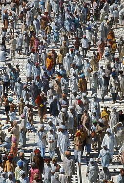 Mass of pedestrians, Amritsar, India  -  Mitsuaki Iwago