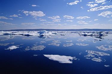 Wager Bay, Northwest Territories, Canada  -  Flip  Nicklin