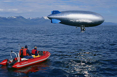 Humpback Whale (Megaptera novaeangliae) group photographed by BBC film crew with remote camera mounted on air ship, Southeast Alaska  -  Flip  Nicklin