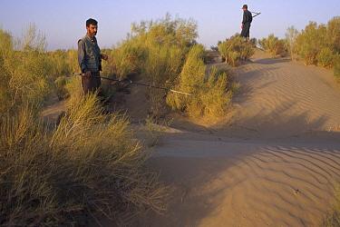 Trip coordinator, Jahangiri, looks for Lizards with militia guard nearby, Zabul, Iran  -  Mark Moffett