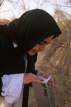 Biologist Sheda Morshed checks mammal traps, Kerman, Iran  -  Mark Moffett