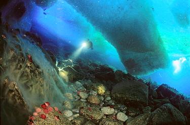 Frozen underwater waterfalls, meltwater drips from glacier and freezes upon contacting seawater, Antarctica  -  Norbert Wu