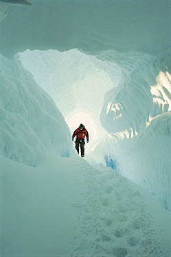 Mountaineer at entrance to the Imax Crevasse, large dangerous crevasse requires ropes and guides, Antarctica  -  Norbert Wu