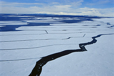 Sea ice lead, sea ice splits to reveal long leads in summer, opening passages for marine life to travel through, McMurdo Sound, Antarctica  -  Norbert Wu