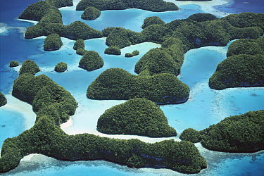 Palau's limestone islands have been cut into strange mushroom-shaped formations, aerial view, Palau  -  Norbert Wu