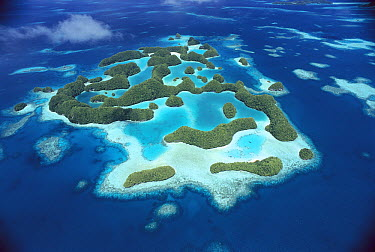 Aerial view of the Rock Islands of Palau, the limestone islands have been eroded into mushroom-like formations  -  Norbert Wu