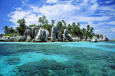 Granite Island and Coconut Palms, unique idyllic islands, Seychelles, Indian Ocean  -  Norbert Wu