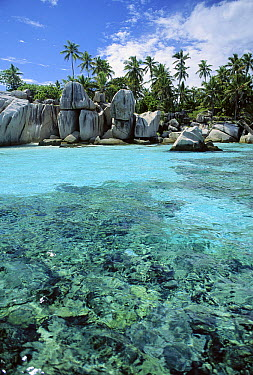 Granite Island and Coconut Palms, unique idyllic islands, Seychelles, Indian Ocean  -  Norbert Wu