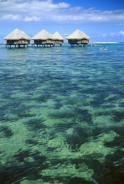 Le Meridien resort, Papeete, Tahiti  -  Norbert Wu
