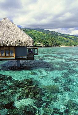 Le Meriden resort, Papeete, Tahiti  -  Norbert Wu