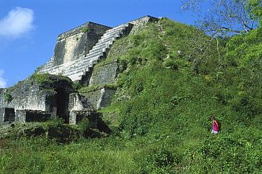 Tourist at Altun Ha Mayan ruins, Belize  -  Norbert Wu