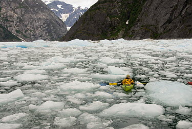Kayaker paddling around ice floes from LeConte Glacier which is receding and showing evidence of global warming, LeConte Bay, Alaska  -  Norbert Wu