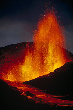 Volcanic eruption, spatter cone formation and lava fountain from radial fissure, February 1979, Cerro Azul east flank, Isabella Island, Galapagos Islands, Ecuador  -  Tui De Roy