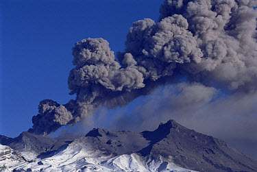 Mt Ruapehu eruption 1996, at 2,927 meters, the highest volcano on the North Island, ash explosion of 3rd day of eruption, Tongariro National Park, New Zealand  -  Tui De Roy