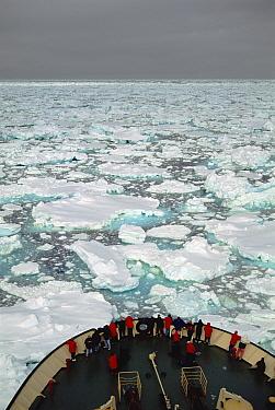 Passengers on bow watching the Russian icebreaker Capitan Klhebnikov forging through sea ice, Ross Sea, Antarctica  -  Tui De Roy