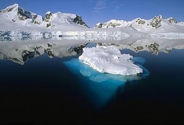 Ice-clad mountains dropping directly into the sea, Paradise Bay, Antarctic Peninsula, Antarctica  -  Tui De Roy