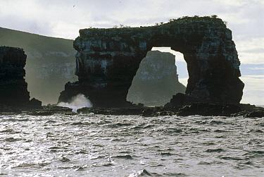 Eroded volcanic tufa arch, world class dive site, Darwin Island, Galapagos Islands, Ecuador  -  Tui De Roy
