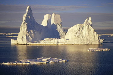 Castellated iceberg, Edward VIII Bay, Kemp Coast, east Antarctica  -  Tui De Roy