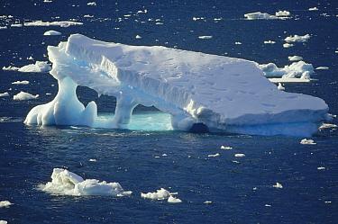 Iceberg, Gerlache Strait, Antarctica Peninsula, Antarctica  -  Tui De Roy