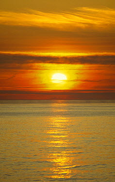 Midnight sun, Barents Sea, Norway  -  Tui De Roy